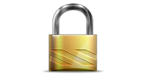 Secure website lock